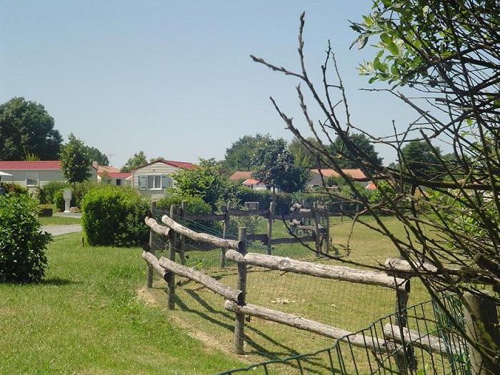 emplacement pour tente au camping en Vendée
