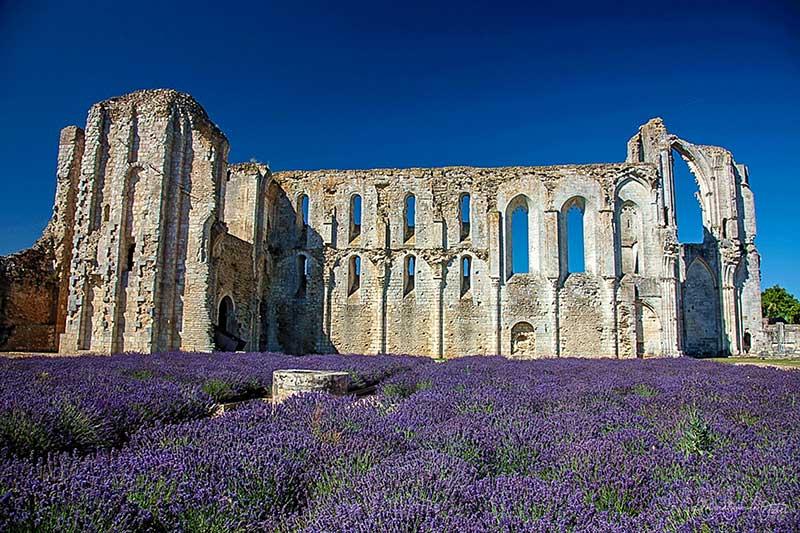 L'Abbaye du marais est située à Maillezais